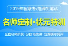 2019年省联考/选调生笔试面授课程