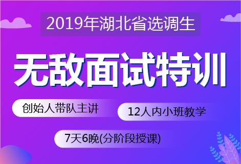 2019年湖北省选调生无敌面试课程